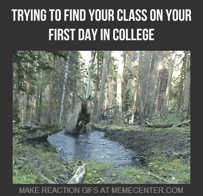 trying-to-find-your-class-on-your-first-day-in-college_gp_2079063
